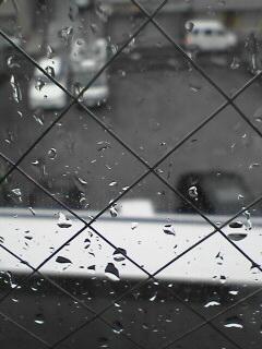 雨と生活と